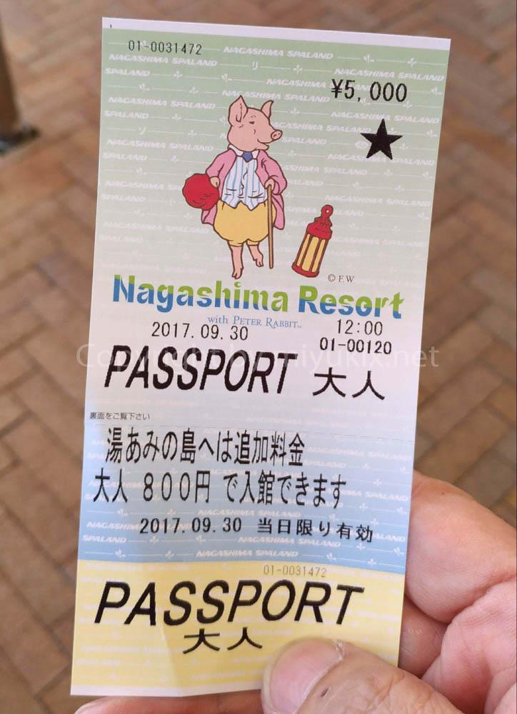 ナガシマスパーランド 入園料金+乗り放題パスポート