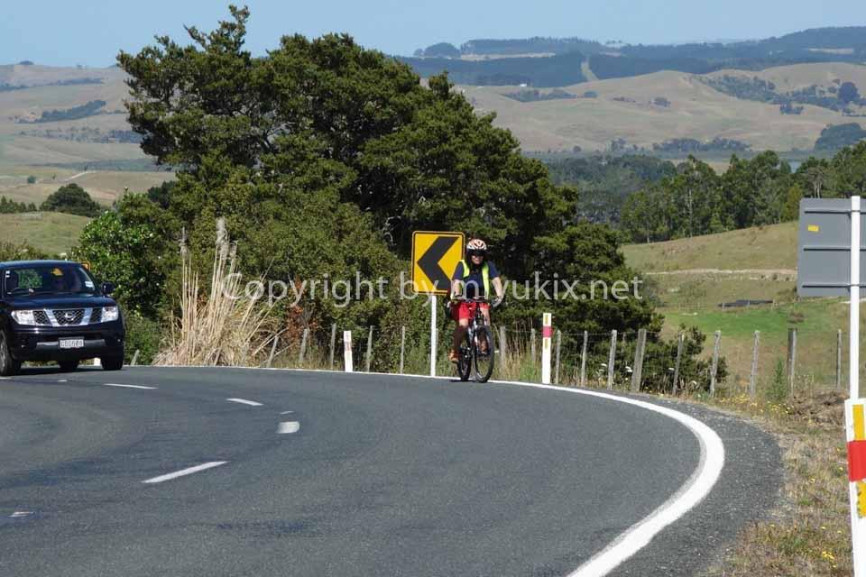 ひつじ天国!ニュージーランドの最北へ!30代OLの自転車テントぶらり旅行 6日目~7日目